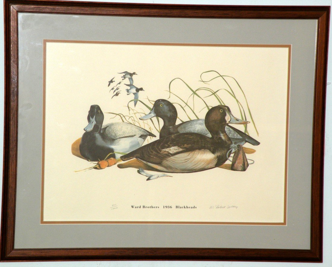 191: 2 Ward Brothers decoy prints by Tolley