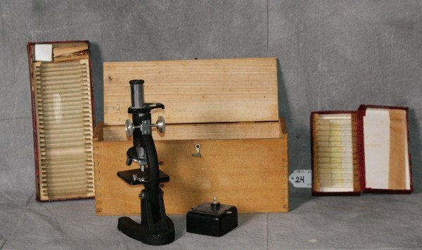 """Microscope with slides. H:8.5"""""""