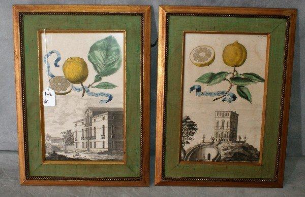 Pair 19th C framed color enhanced prints