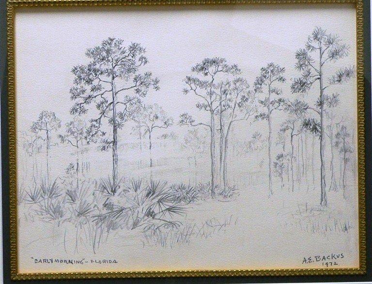 "7: A .E. Backus ""Early Morning Florida """