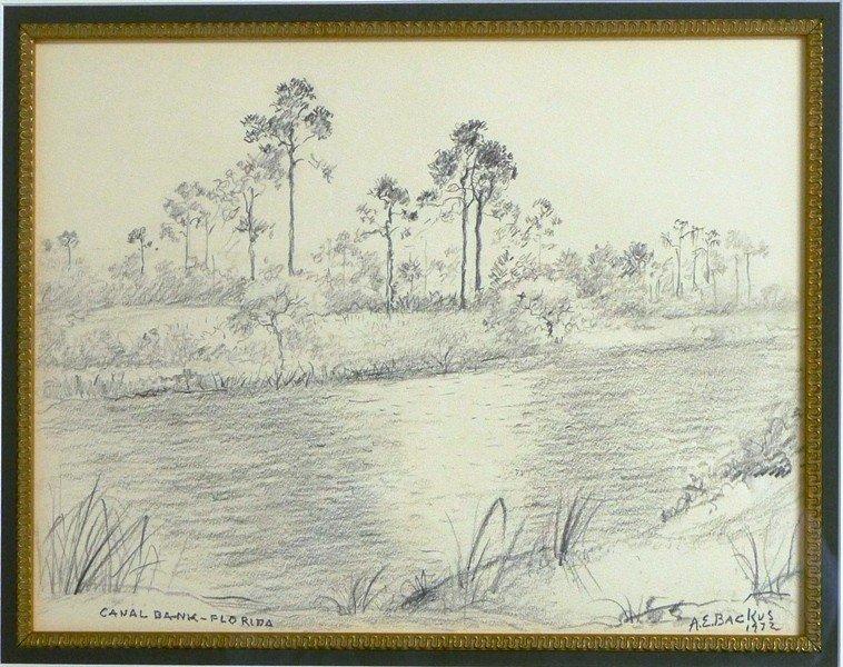 "8: A .E. Backus ""Canal Bank Florida"""