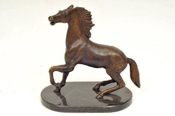 5: Horse
