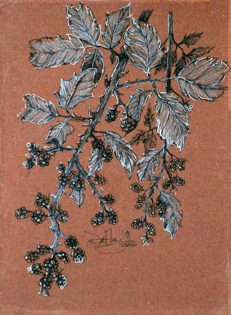 """Simple Nature"", David Freeberg"
