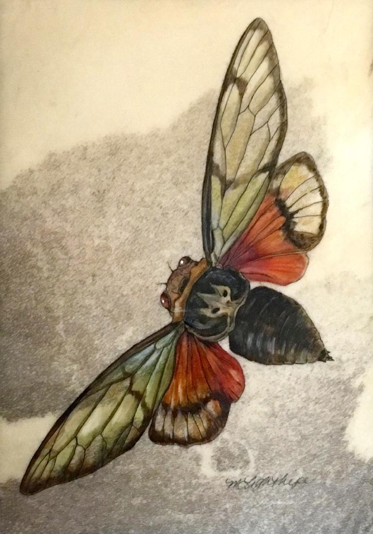 """Cicada"", Mindy Lighthipe"