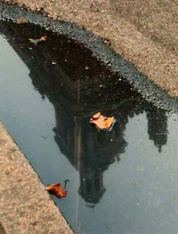 """79: """"In the Gutter,"""" Laura Smith"""