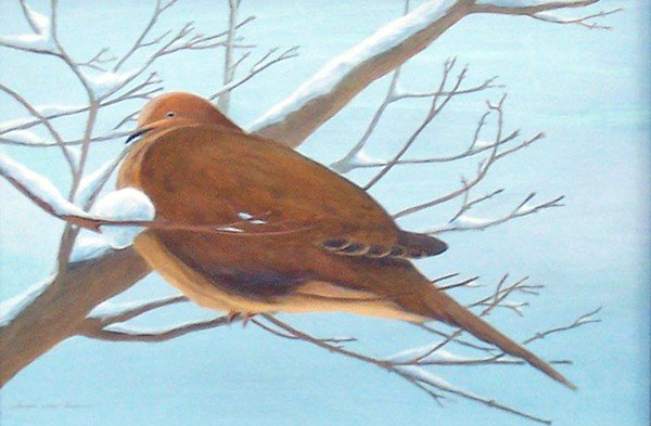 "6: ""Mourning Dove in Winter"" by Sharon Way-Howard"