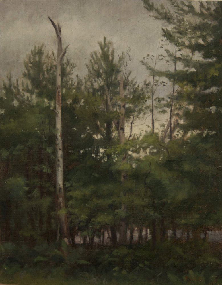 "5: ""Rainy Day Forest"", Emilie Lee"