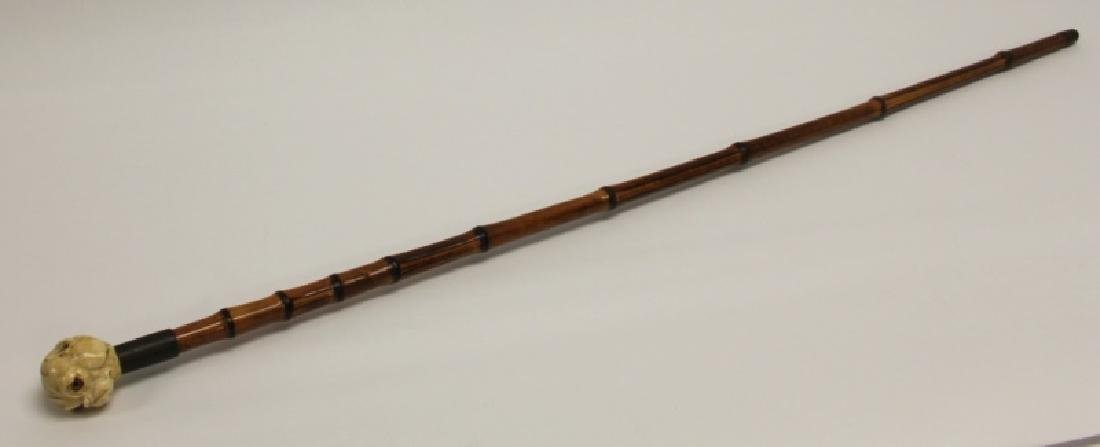 19C Carved Bulldog Grip Cane w Glass Eyes & Bamboo