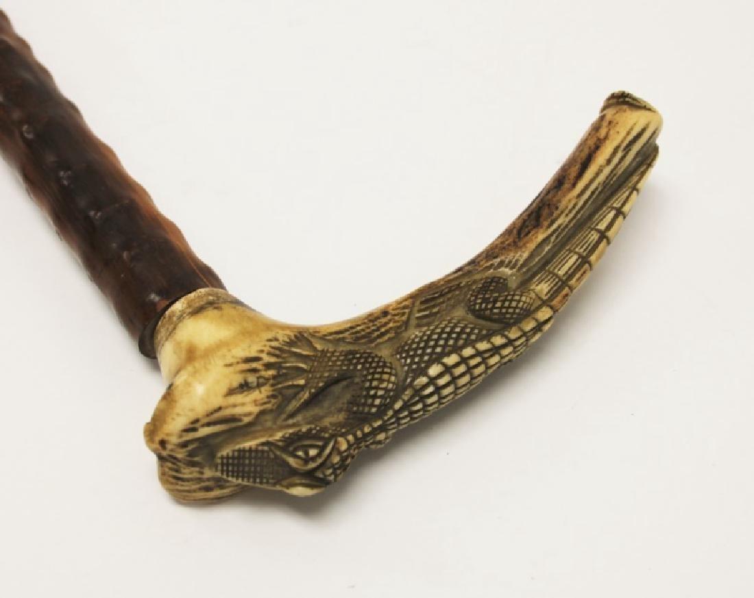 (2) Walking Sticks Carved Horn Alligator, Parrot - 3