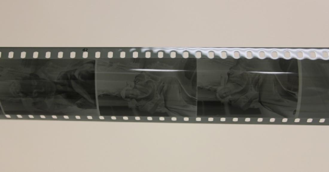 Leica Film Box w(25) ca 1930's Exposed Film Rolls - 6