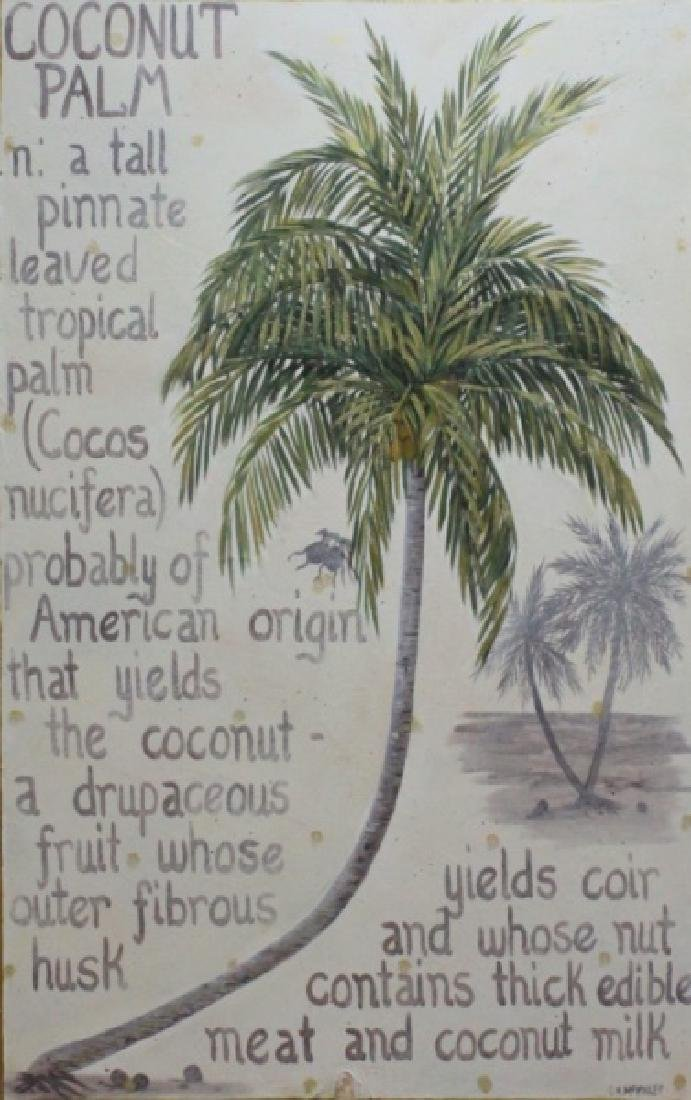 C.K. Mckinley Oil /Canvas Coconut Palm Shell Frame - 2