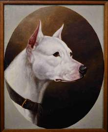 C E Brittan (1837 - 1888) Staffordshire Terrier