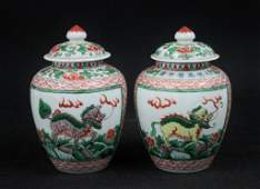 (2) Chinese Lidded Porcelain Ginger Jars