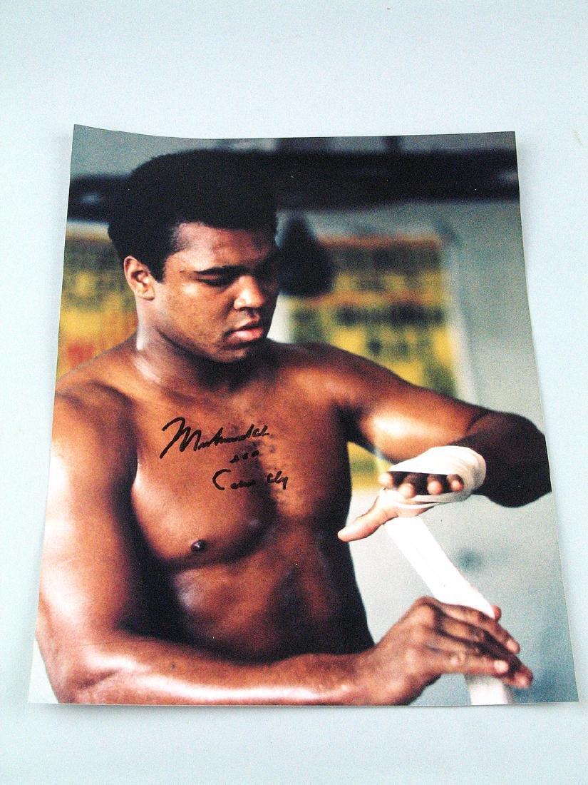 Muhammad Ali Cassius Clay Signed 8 x 10