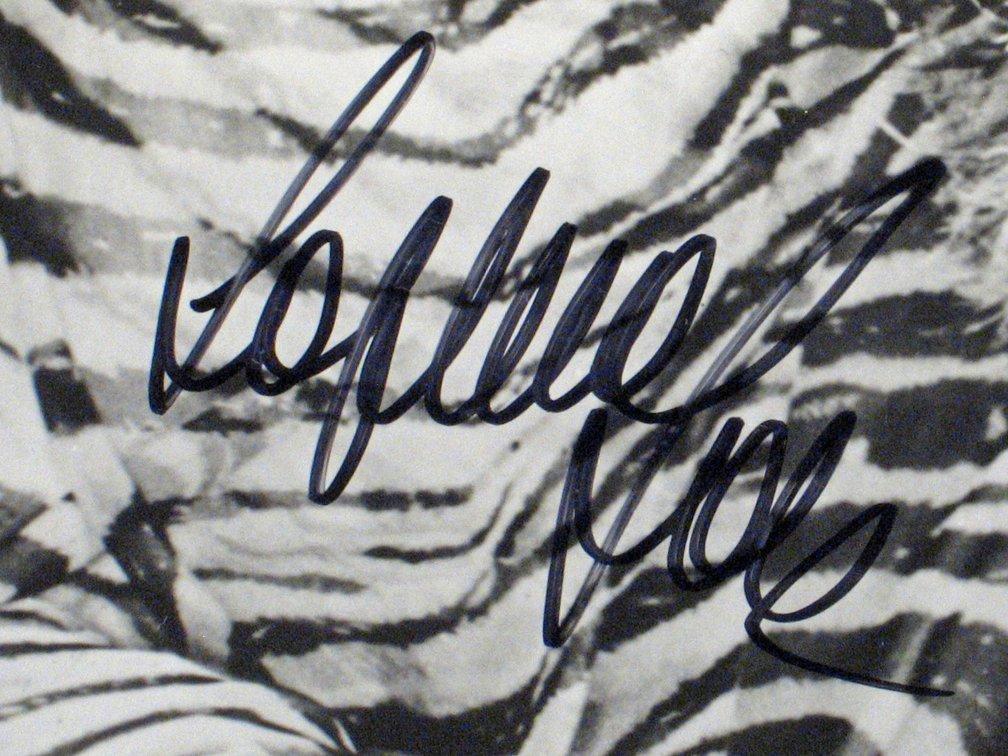 Sophia Loren Autograph Lot - 5