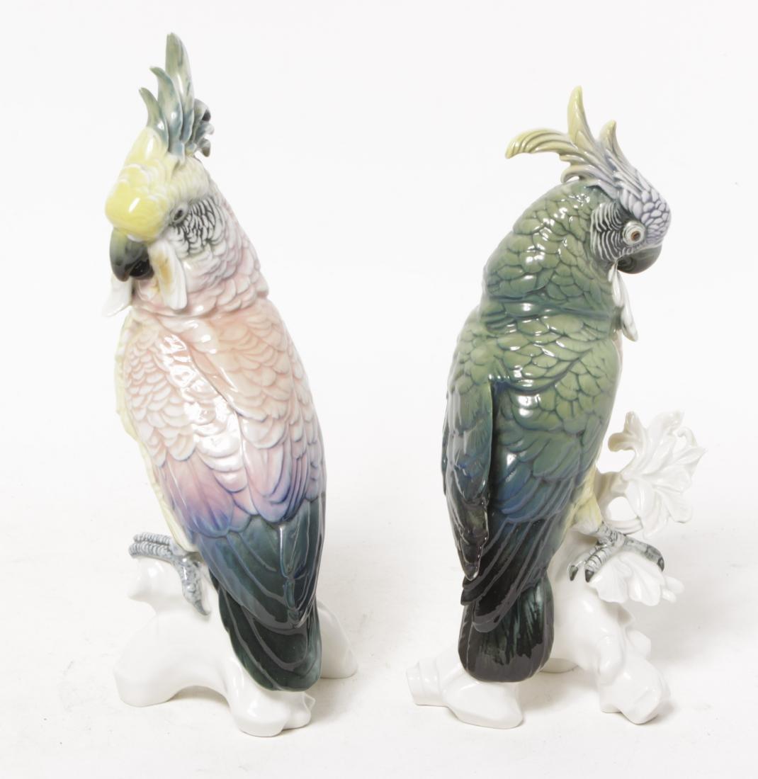 Pair of 'Karl Ens' Porcelain Parrots - 9