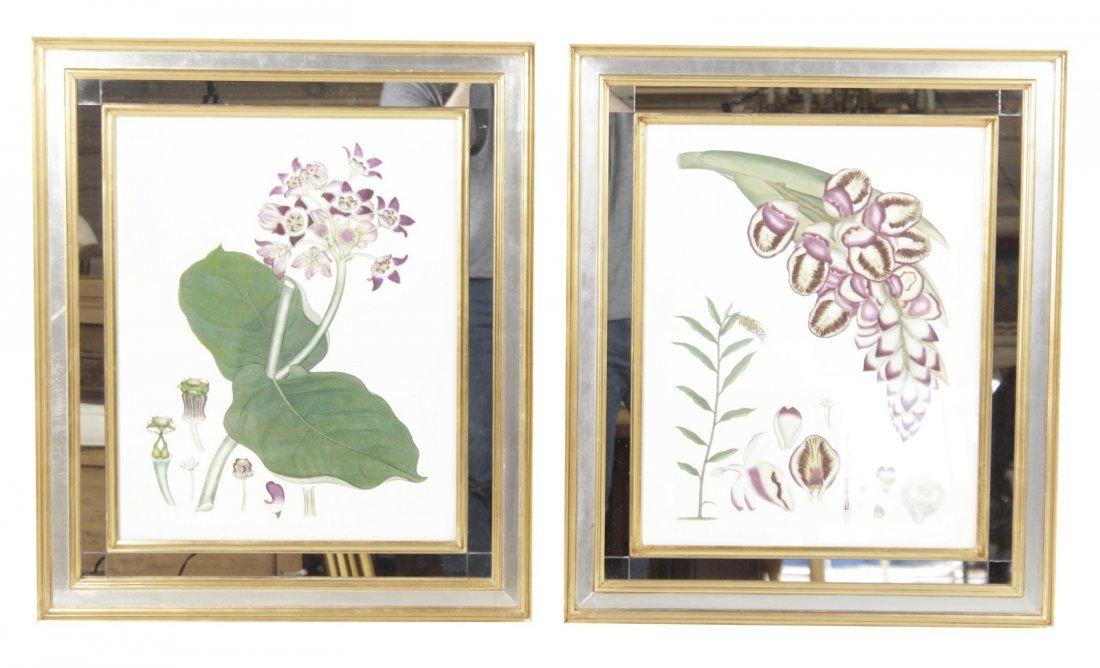 Pair  Decorator Botanicals in Mirrored Frames