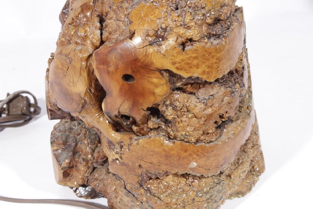 Naturalistic Burl Wood Lamp - 5