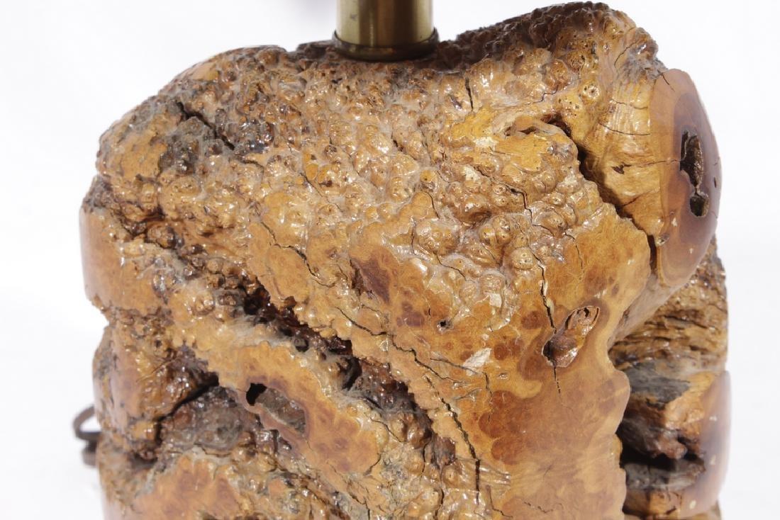 Naturalistic Burl Wood Lamp - 6