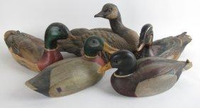 Group 5 Duck Decoys