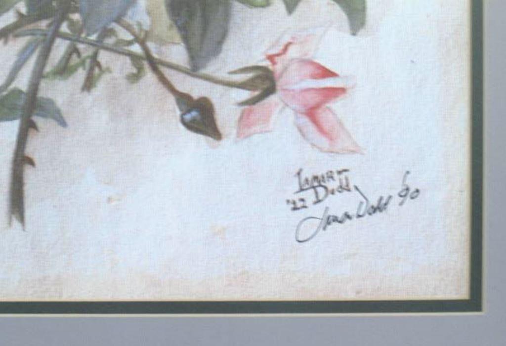 James Dodd Signed Rose Print - 4