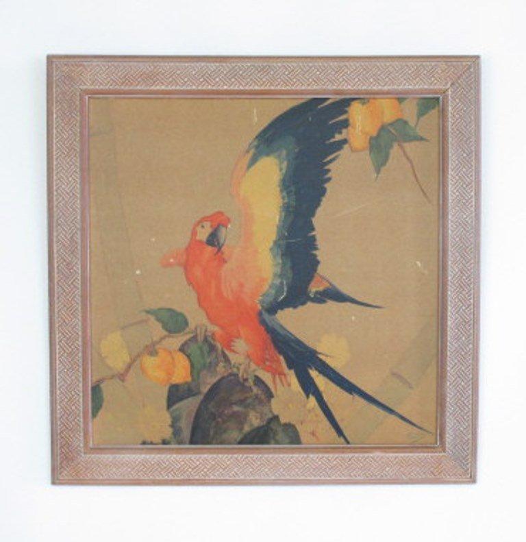 Stark Davis Parrot Print