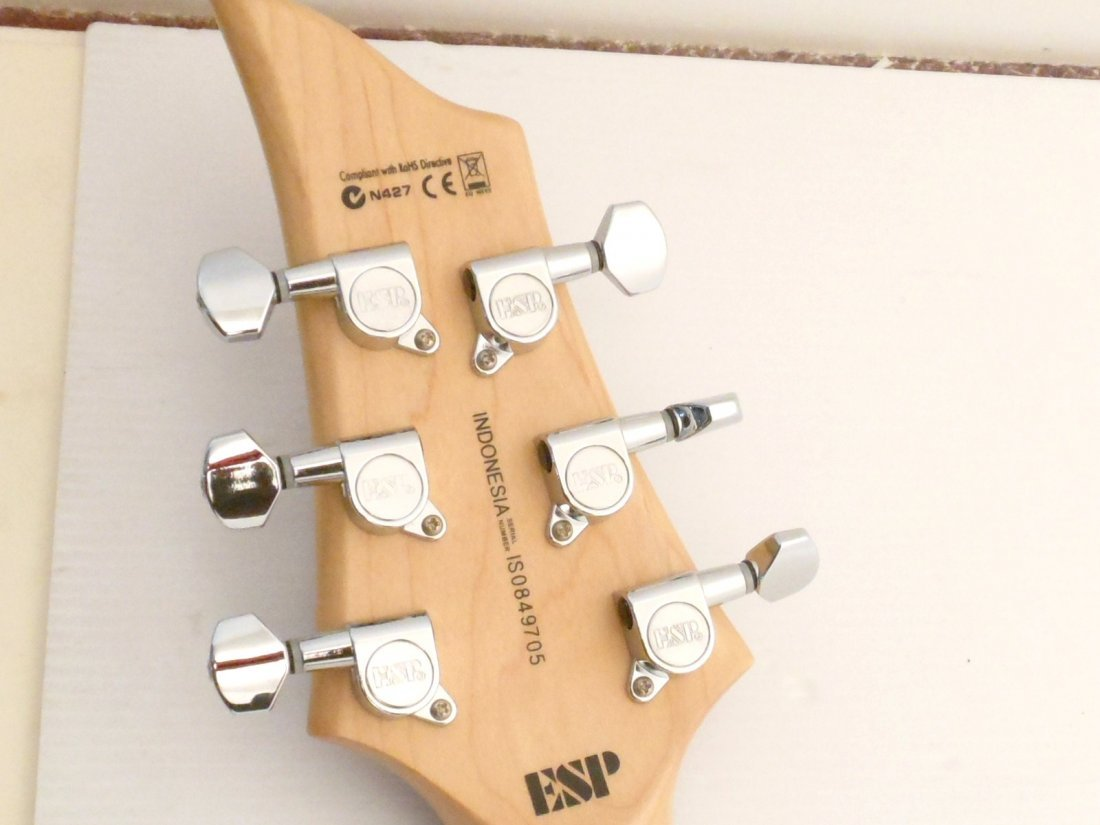 ESP LTD F50 Electric Guitar - 10