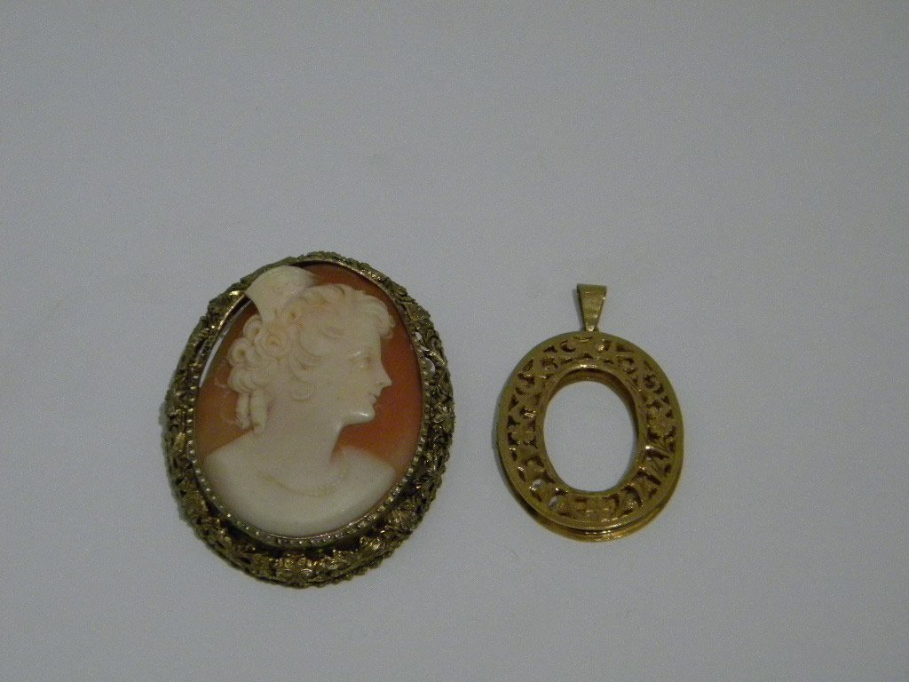 4: 2 pcs of Jewelry, Shell Cameo and locket