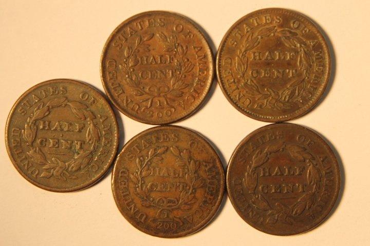 5 Pcs Copper Half Cents - 2