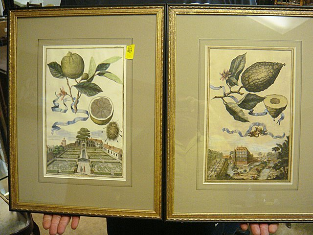 407: Pair of Framed Antique French, Colored Etchings.