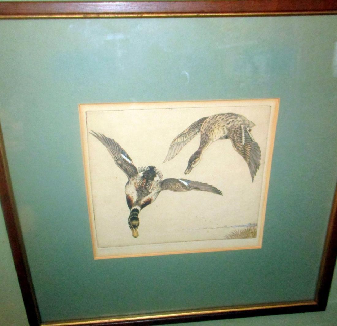 Etching of Mallards by Benson B Moore
