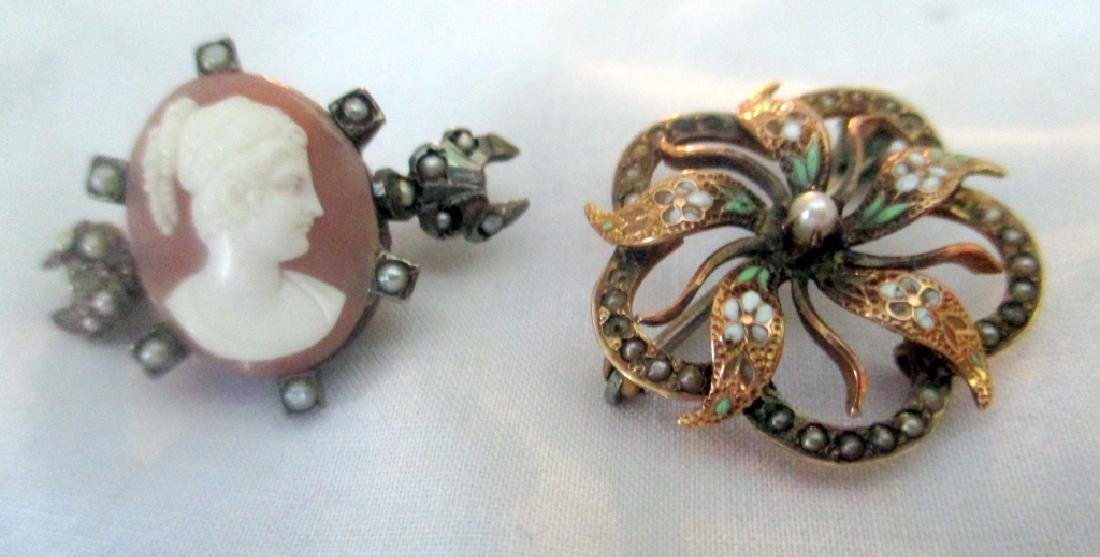 Two Victorian Lady's Brooches
