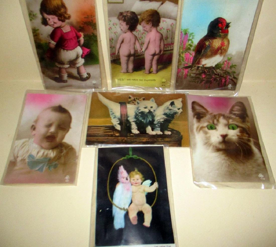Lot of Seven Noisey Vintage Postcards
