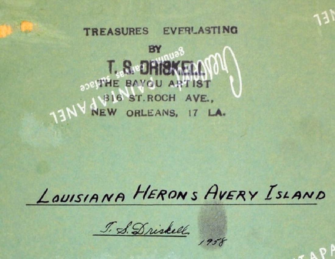 "OOB ""Louisiana Herons Avery Island"" - 3"