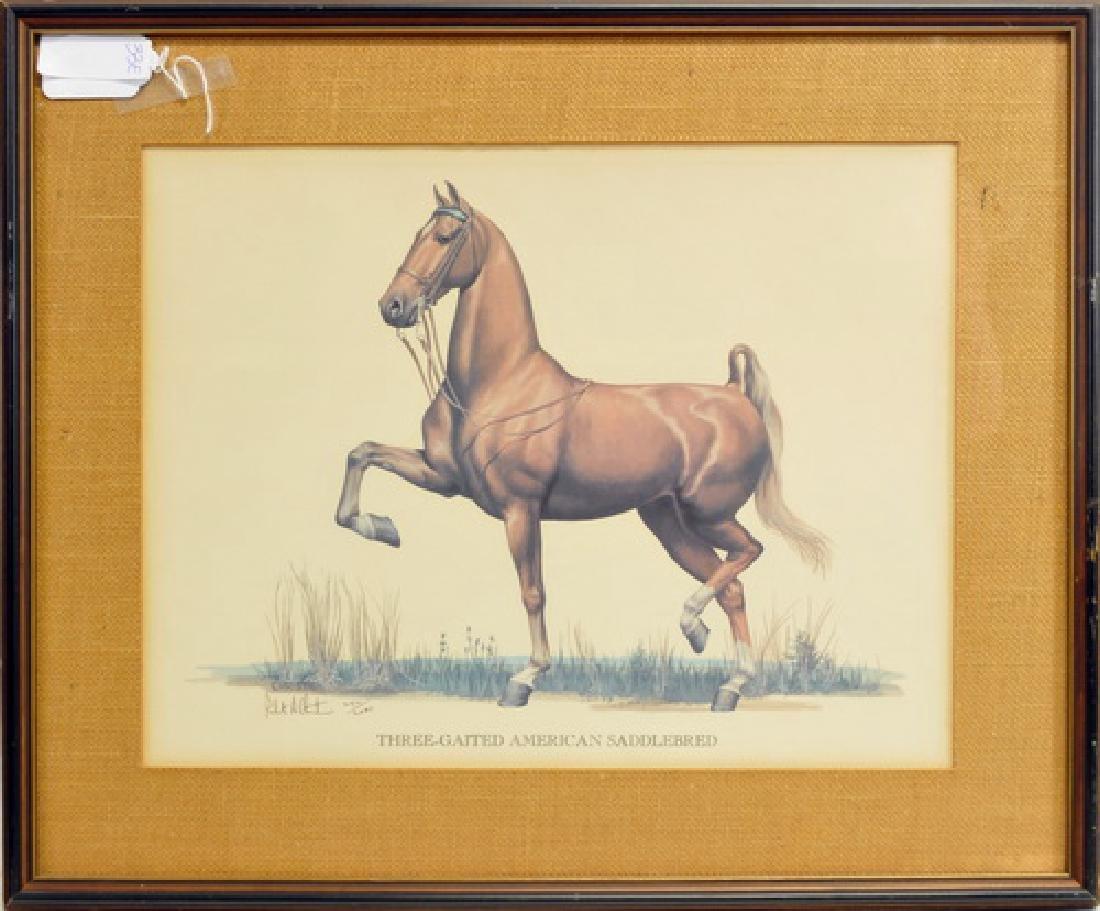 Three Gaited Horse Numbered Print