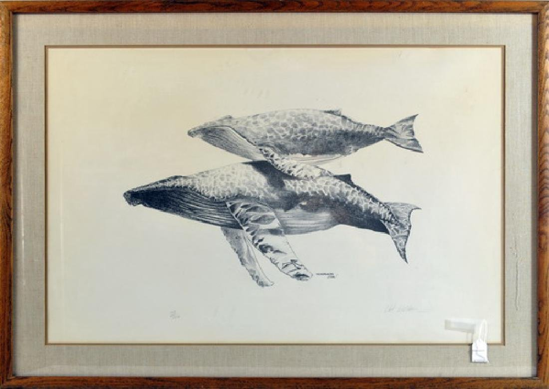 Humpback Whales Signed Print By Webber