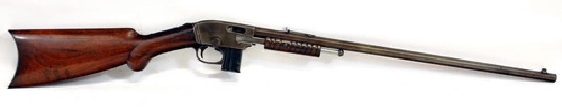 Savage 22 Caliber Pump Rifle