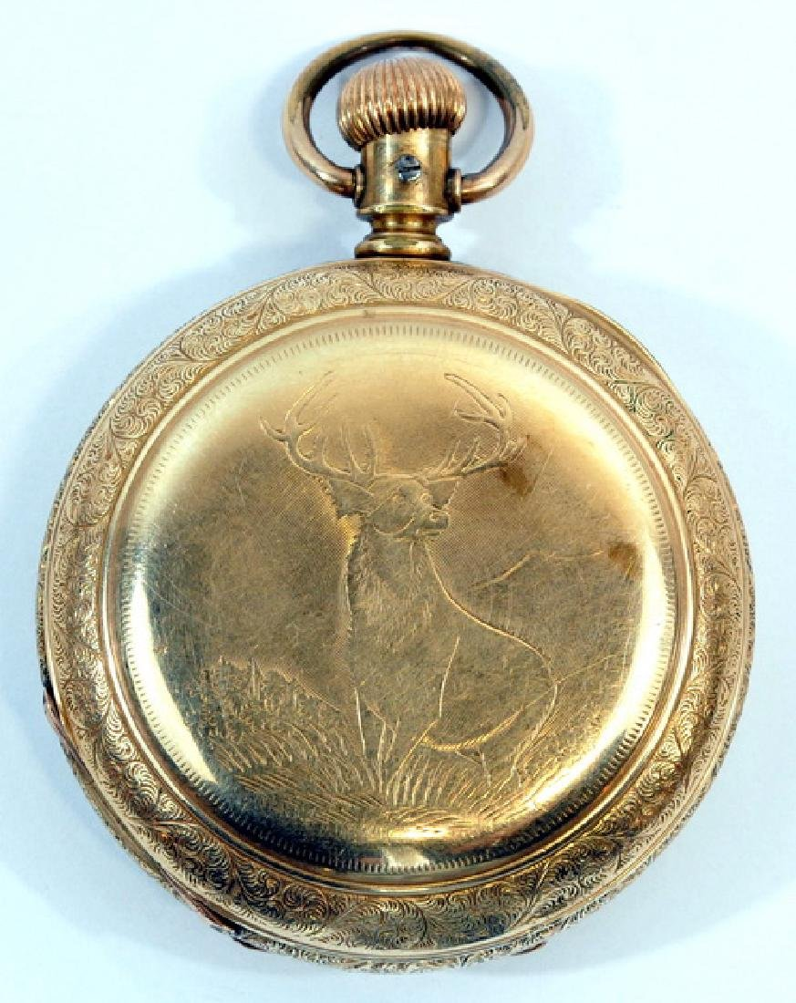 Antique Elgin Pocket Watch In Glass Case - 3