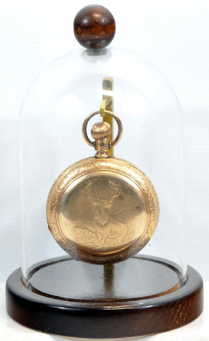 Antique Elgin Pocket Watch In Glass Case - 4
