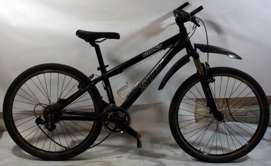 1: Black Giant STP3 21 speed mountain bike