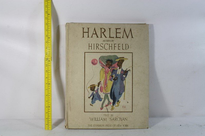 1: Harlem Book as seen by Hirschfield #713 of 1000 with