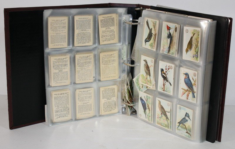 26: Album of tobacco cards including birds and more