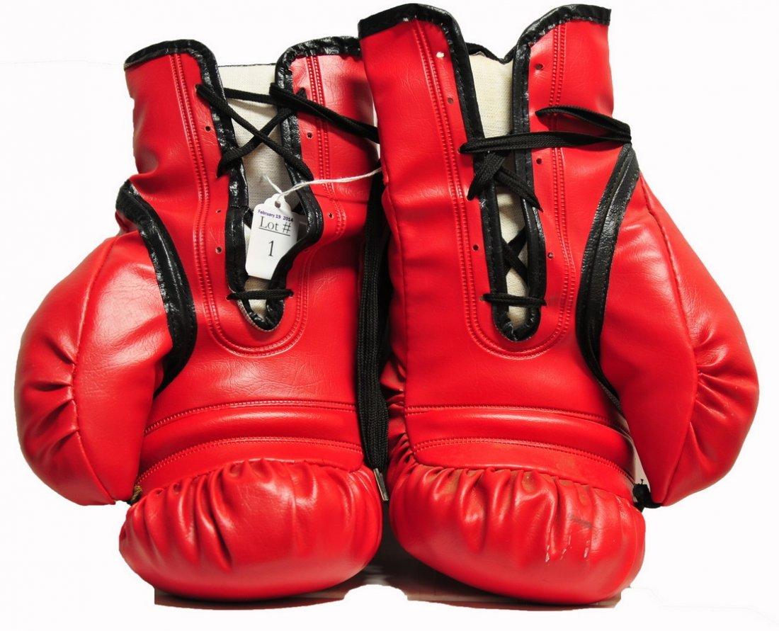 Muhammad Ali Signed Everlast Boxing Gloves