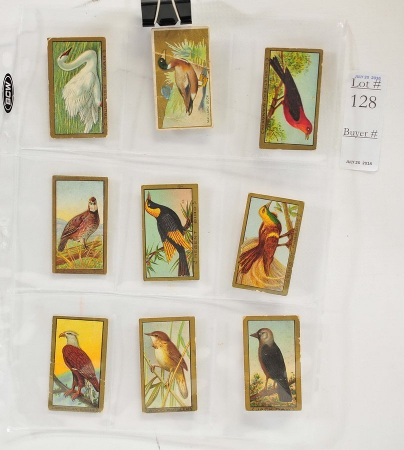 119 Bird Tobacco Cards