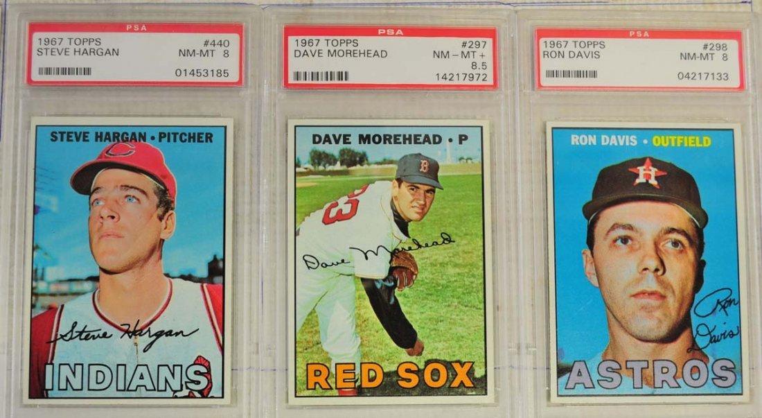13 1967 Topps PSA Graded 8 Cards - 3
