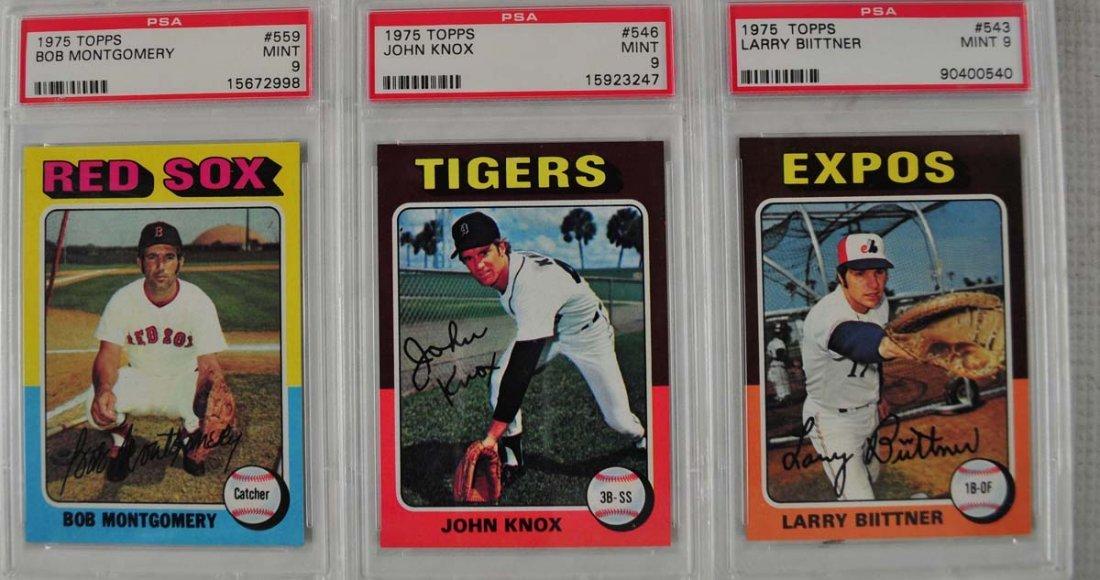 15 1975 Topps baseball Cards PSA Graded Mint 9
