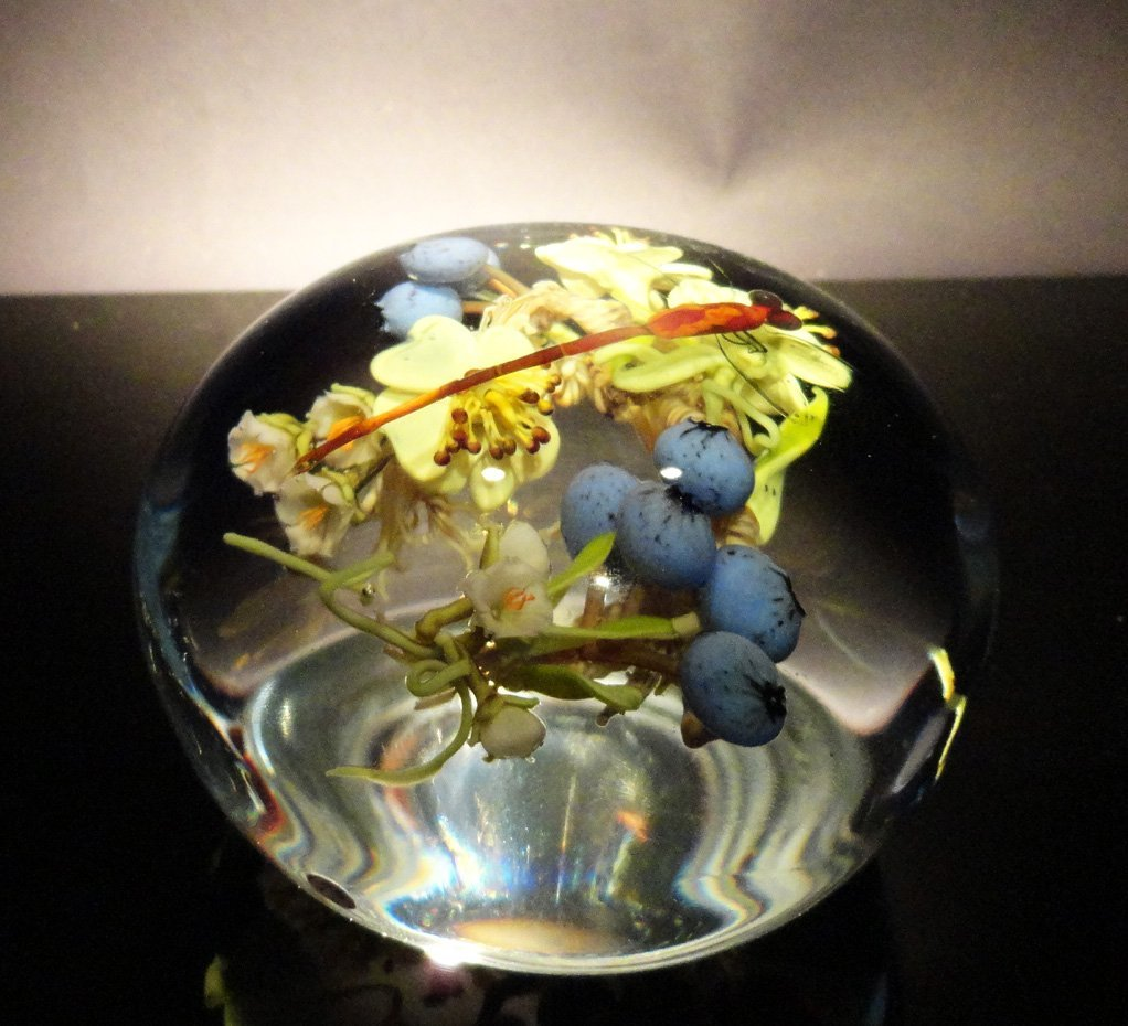 5: Paul Stankard 'Untitled' dragon fly and blue berries