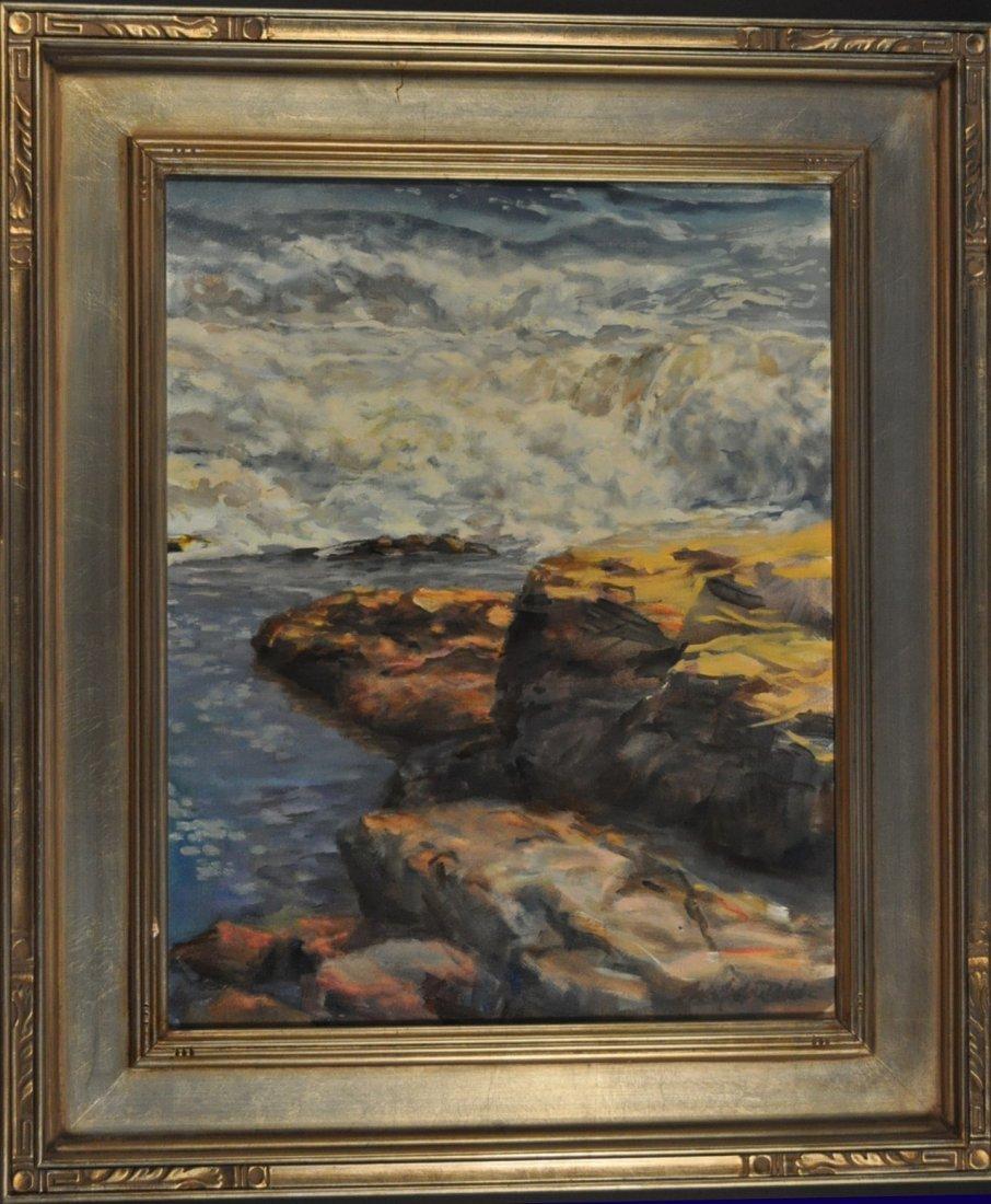 24: Tide Pool, Bass Rocks