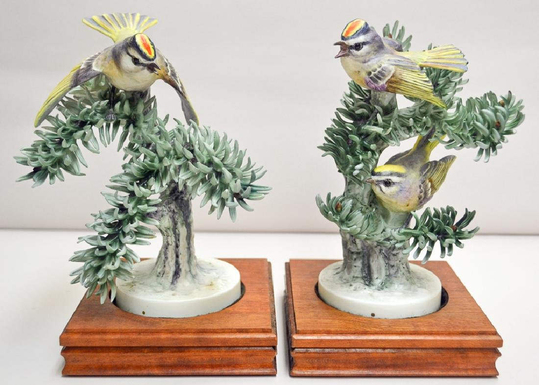 Pair Of Golden Crowned Kinglets And Noble Pine