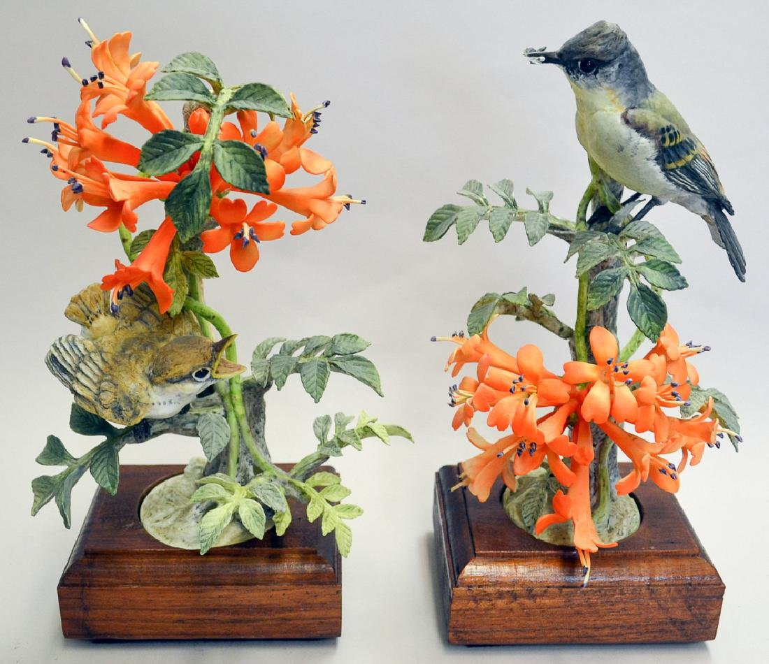 Dorothy Doughty, Phoebes And Flame Vine